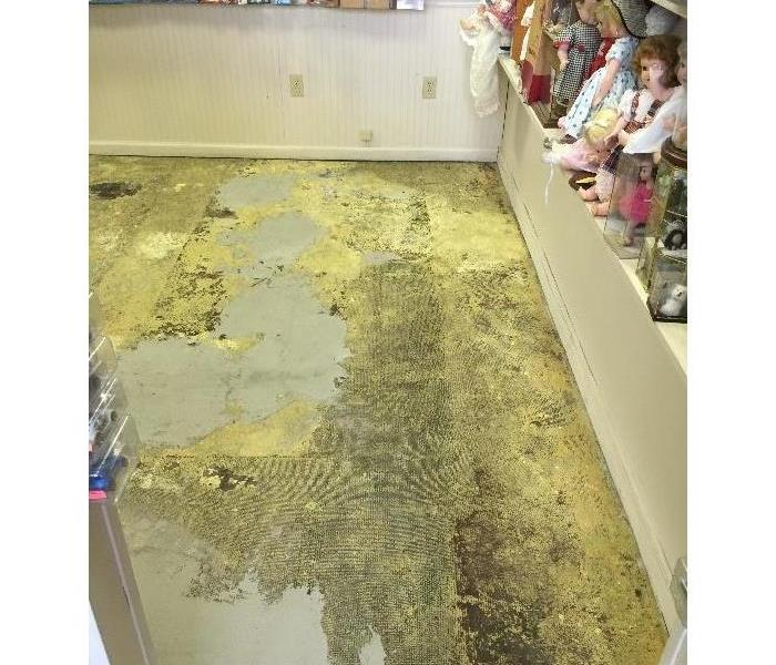 Water Loss Can Lead to Mold Issues After