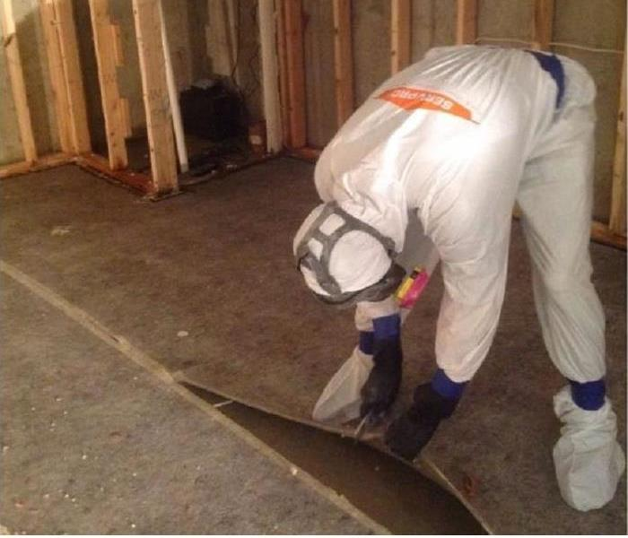 Mold Remediation in Progress in Cincinnati, Ohio