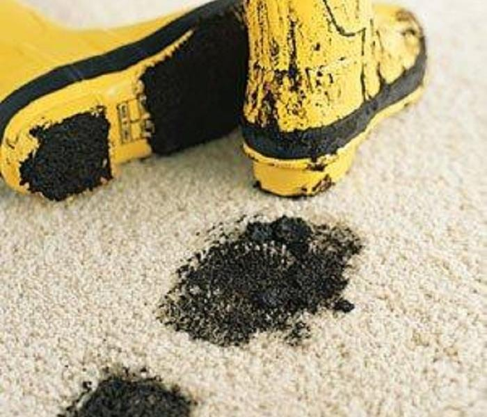 Cleaning Restoring Stain Resistence with Professional Carpet Cleaning