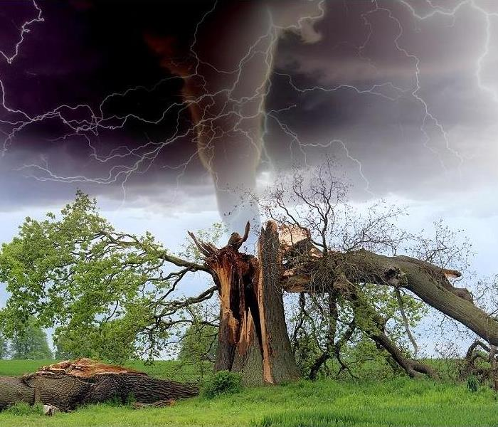 Storm Damage Tips to Be Better Prepared for a Tornado