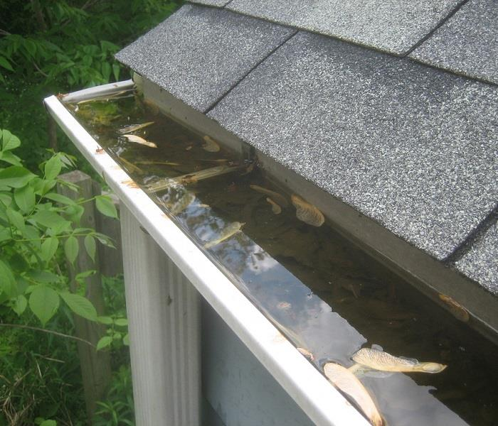 Water Damage As the Fall Season Arrives...It's Time to Clean the Gutters!