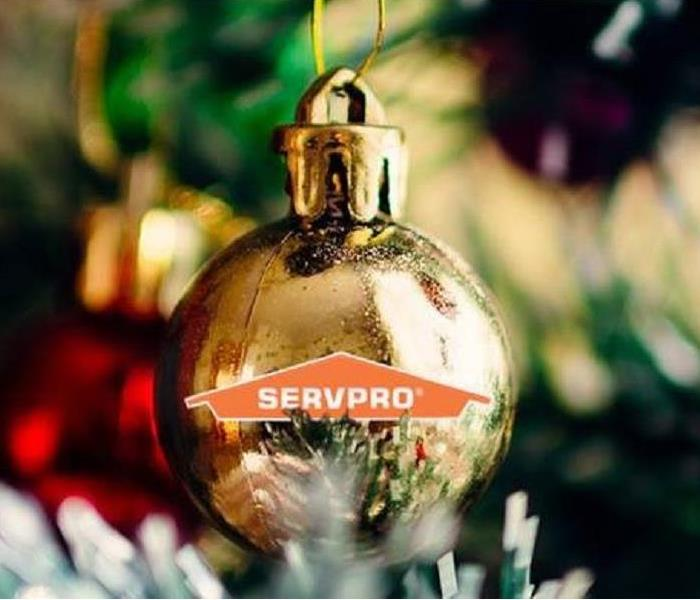 Don T Let Your Live Christmas Tree Become A Fire Hazard Servpro Of