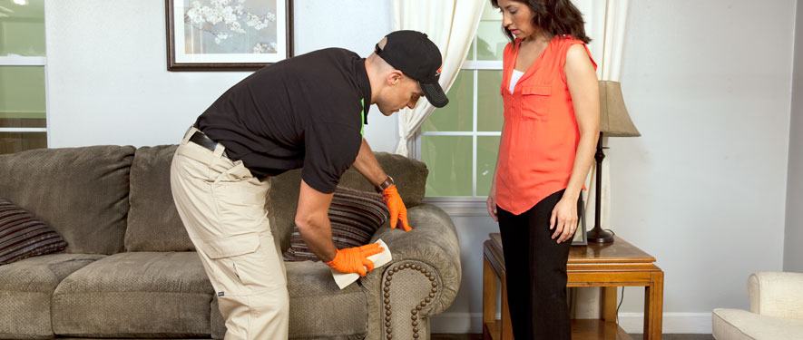 Anderson, OH carpet upholstery cleaning